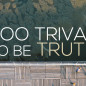 Too Trivial To Be Truth!